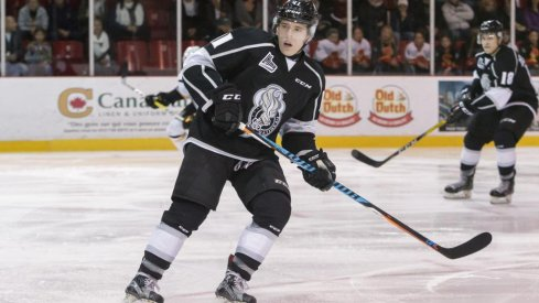 Vitaly Abramov of Gatineau Olympiques waits for the puck