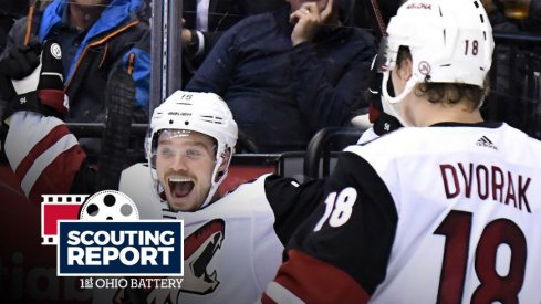 Arizona Coyotes forwards Max Domi and Christian Dvorak celebrate a goal