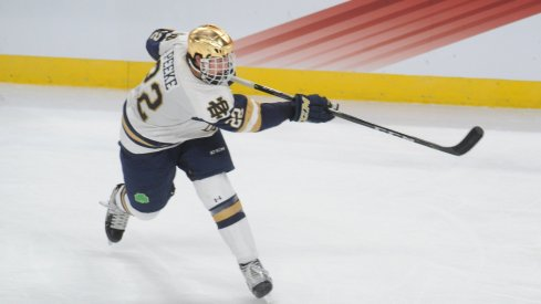 Apr 7, 2018; St. Paul, MN, USA; Notre Dame defenseman Andrew Peeke (22) takes a shot during the second period against the Minnesota Duluth Bulldogs in the 2018 Frozen Four college hockey national championship game at Xcel Energy Center. Mandatory Credit: Marilyn Indahl-USA TODAY Sports